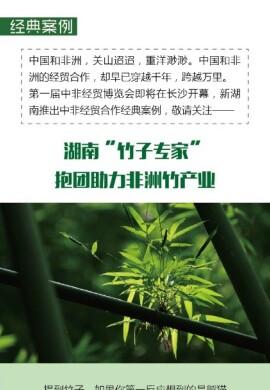"""经典案例丨湖南""""竹子专家""""抱团助力非洲竹产业"""