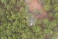 無人機飛防作業控制松毛蟲害