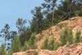 衡东:立行立改砂石公司挖山毁林环境问题