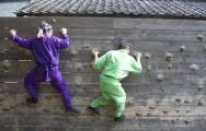 揭日本忍者学校