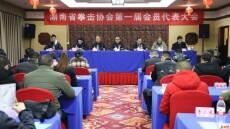 省拳击协会今日在长成立 史彩强当选协会主席