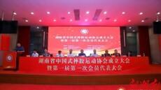 湖南省中国式摔跤运动协会正式成立