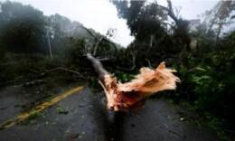 应急管理部:台风山竹造成4人死亡 具体灾情仍在统计