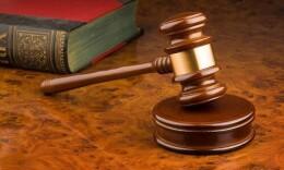 湖南最大数量捕杀贩卖小天鹅案一审判决