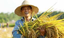 首届中国农民丰收节来了!来看看湖南主题活动都有啥