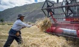 首个中国农民丰收节!今年这些政策值得关注