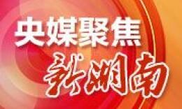 """湖南集中整治形式主义官僚主义 向16类问题""""开刀"""""""