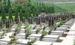 湖南今年將建設100個農村公益性公墓