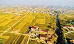 湖南推進農村集體產權制度改革 明年10月底前基本完成