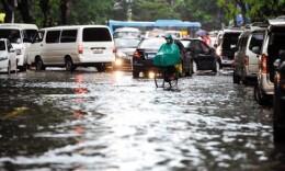 新一輪強降雨上線 專家提醒做好田間管理