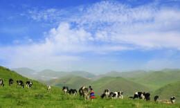 全國建成十處國家公園體制試點,湖南有一處,你去過嗎