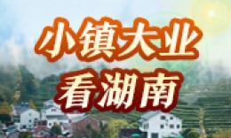 """小鎮大業看湖南丨匠心鑄""""國瓷""""——醴陵五彩陶瓷小鎮見聞"""