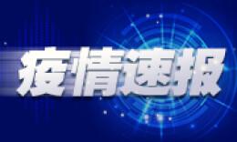 世卫组织:中国以外新冠肺炎确诊病例超两万例