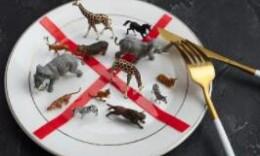 市场监管总局:严肃查处直播吃食野生动物等行为