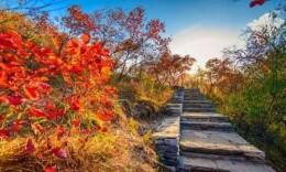 今天湖南大部阳光在线 登高赏秋正当时