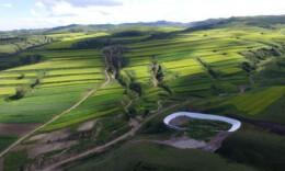國辦:加強草原保護修復 到2025年草原退化趨勢獲根本遏制