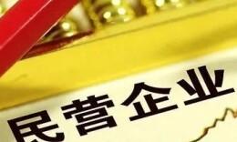 重磅!2021中国民营企业500强全榜单和分析报告来了!