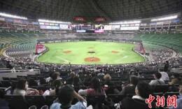 日本职业棒球赛恢复 允许5000名球迷现场观看