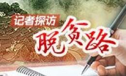 """记者探访脱贫路丨两塘村:有机蔬菜叩开""""致富门"""""""
