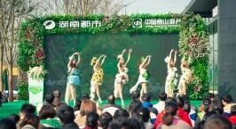 西洞庭观鸟 开启2017绿色跨年大行动
