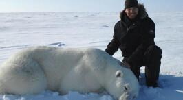 世界上最冷的工作 在北极追寻北极熊踪迹