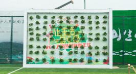 绿色跨年 千人共创巨幅绿色长沙