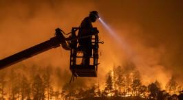 美国加州北部山火 过火面积创历史新高