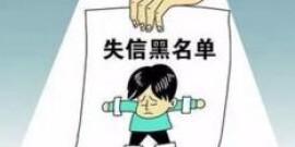 湖南公布首批严重违法失信企业名单