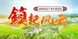 """""""镇""""起风云――湖南特色产业小镇巡礼"""