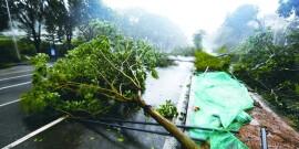 台风山竹来袭永州等地暴雨
