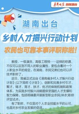 【手机美高梅游戏网址】湖南出台乡村人才振兴行动计划 农民也可靠本事评职称啦!