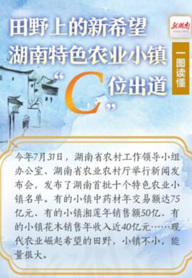 """一图读懂丨田野上的新希望,湖南特色农业小镇""""C""""位出道"""