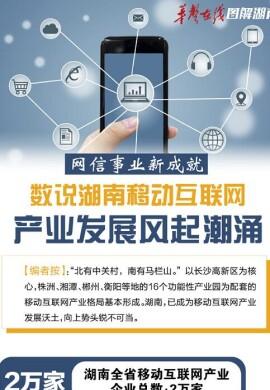 [网信事业新成就]数说湖南移动互联网 产业发展风起潮涌