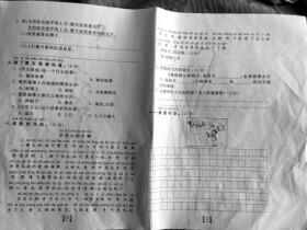 2015湖南高考语文作文题:世界那么大,大树也想