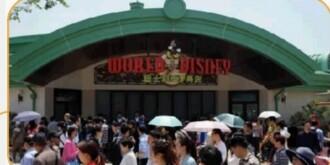 听说体验上海迪士尼的南京人  已经哭晕回不来了……