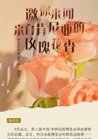 """中非經貿博覽會小""""劇透""""①:邀你來聞來自肯尼亞的玫瑰花香"""