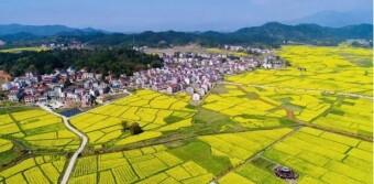 [一周湖南]18县市携手推进湘赣边区乡村振兴示范区建设 黔张常铁路有了新进展