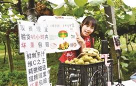 抖音網紅主播在直播公益助農推銷獼猴桃