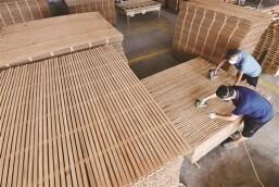 小竹子 大产业