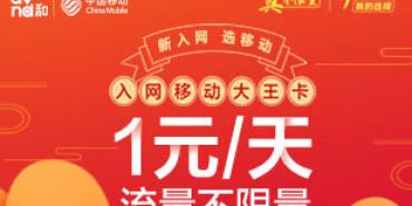入网移动大王卡1元/天 流量不限量