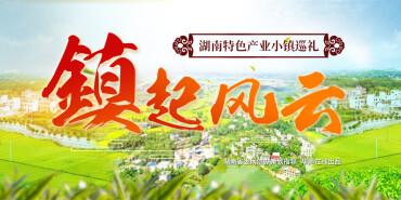"""【专题】""""镇""""起风云――湖南特色产业小镇巡礼"""