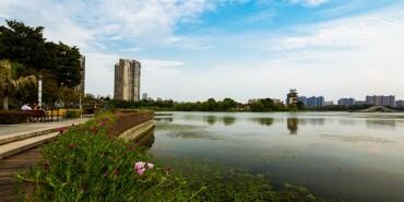 摄在长沙:写意月湖