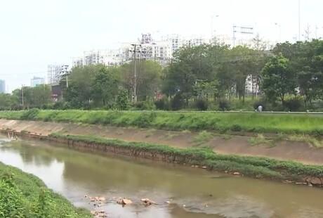 长沙圭塘河井塘段将建蓄水湿地公园