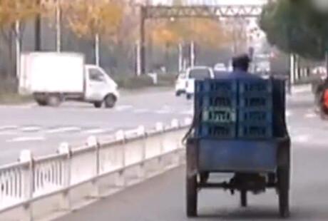 外公见义勇为 2岁幼孙被偷车贼碾压致死