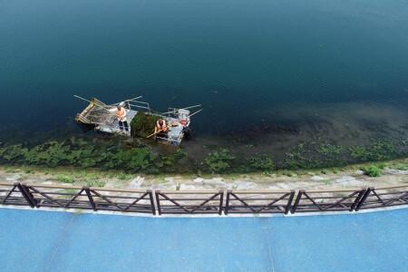 清理水草 美化河道