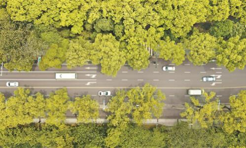 路在绿中 人在景中