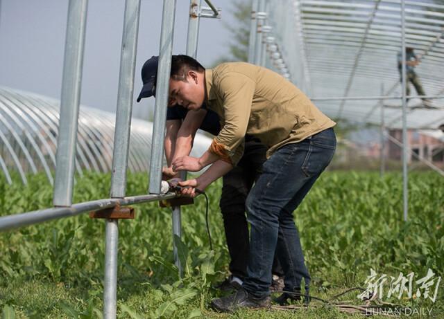 (3月8日,蓝山县六七甲村智慧生态循环农业扶贫产业园,工人们抢抓晴好天气建设蔬菜大棚。梁利 摄)