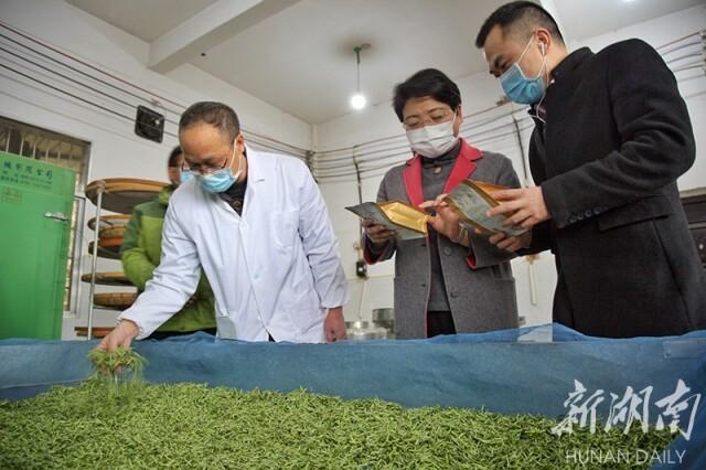 (3月9日,保靖县湘格格黄金茶叶产销专业合作社加工车间,驻村扶贫单位干部在了解春茶的生产情况。彭珂 摄)