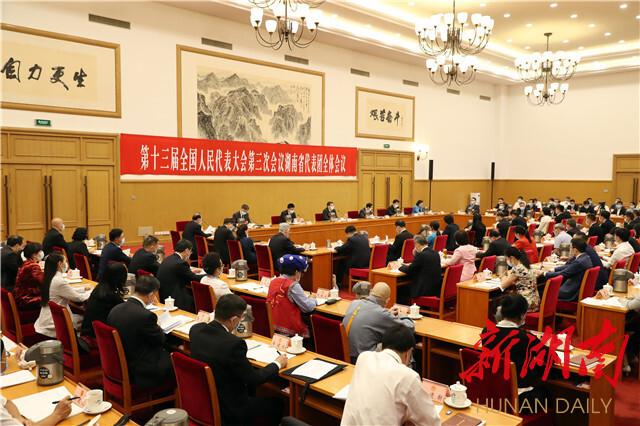 湖南代表团举行第一次全体会议 推选杜家毫为团长 许达哲等为副团长