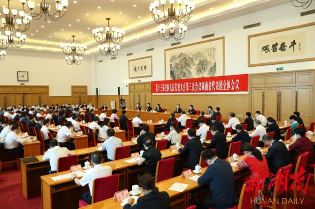 湖南代表团举行联组会议 杜家毫主持并讲话 许达哲出席